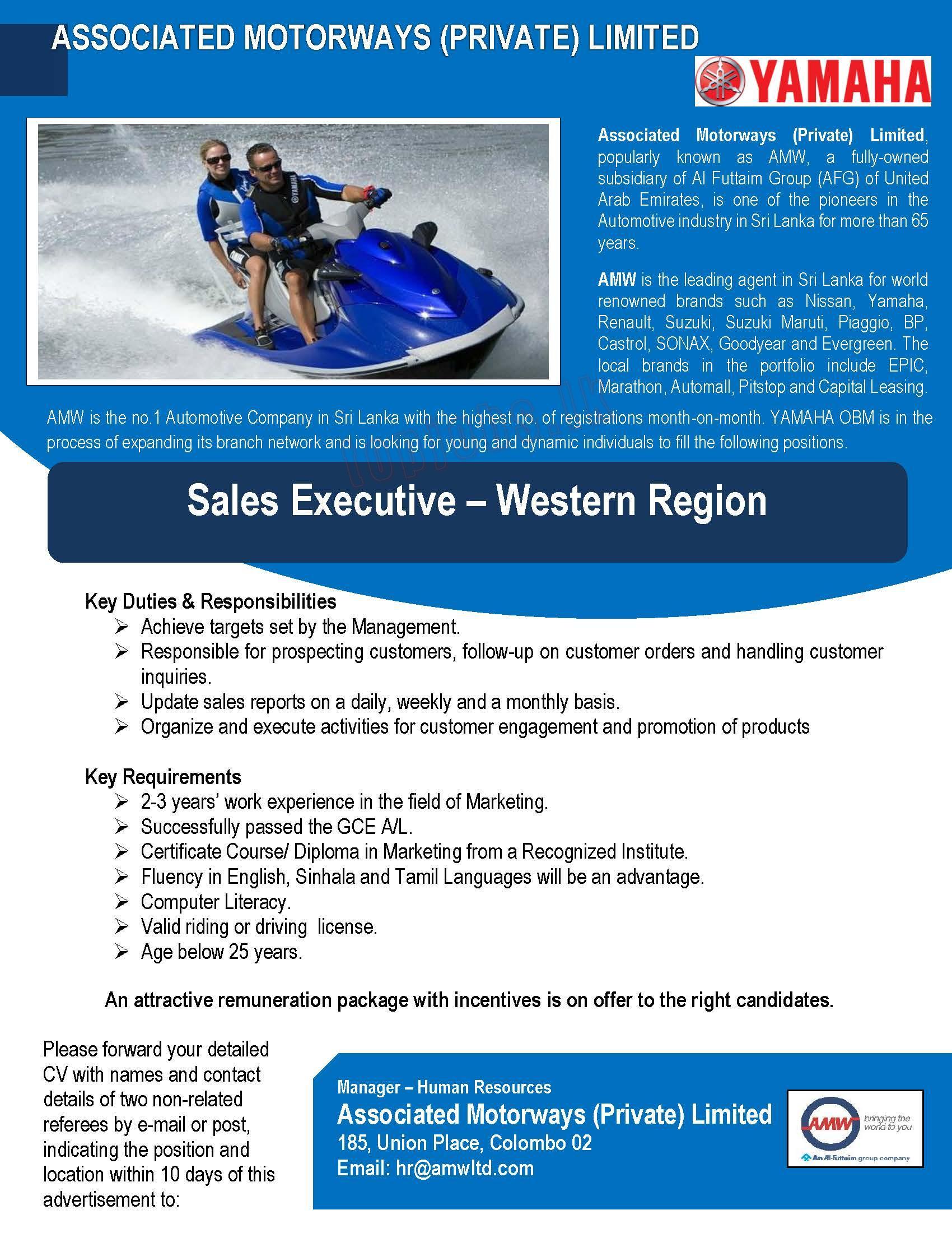 28668d046cb Sales Executive - OBM Sales